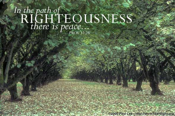 In The Quiet Places---a look at peace: Ecards Online, Christian Ecards, Biblical Truths, 12 28 Ecards, Card Ecards, At Peace, Scriptures Card, Bible Ver, Proverbs 12 28
