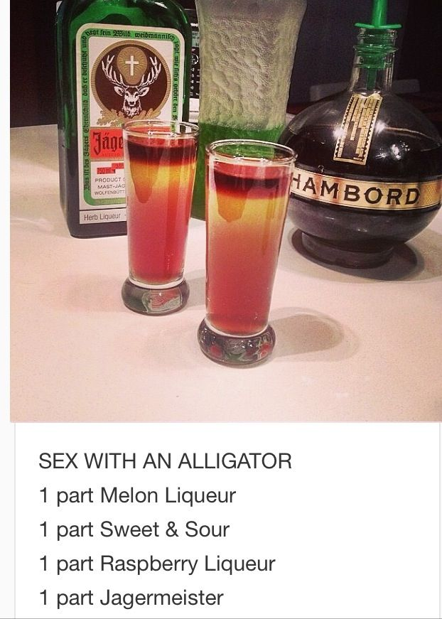 sex with an aligator drink