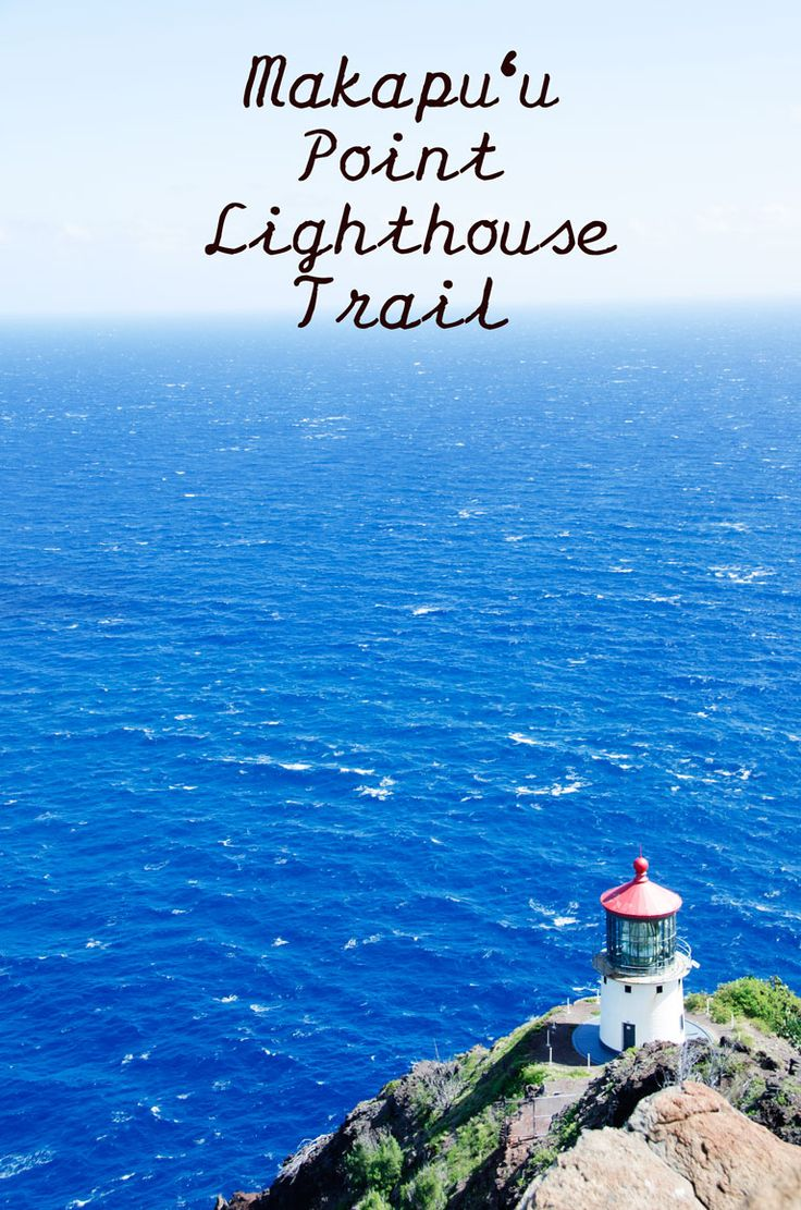 One of the most beautiful hikes on Oahu, the Makapuu Lighthouse Trail has amazing views the entire way. And if you come here during the right months (December-March) you have a pretty good chance of spotting whales.