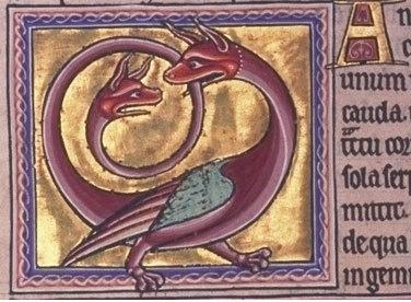 암피스바에나(Amphisbaena)  - Amphisbaena란 그리스어로 '두 방향을 향해 나아가는 자'라는 뜻이며, 유럽전설에 등장하는 신체의 양단에 머리를 가진 쌍두의 뱀를 가리키는 말이다. 암피스바에나의 모습은 유럽의 문장등에 자주 그려져 있는데 그 중에는 2개의 다리를 가진 것이나 드래곤같은 날개를 가진 것도 있다.