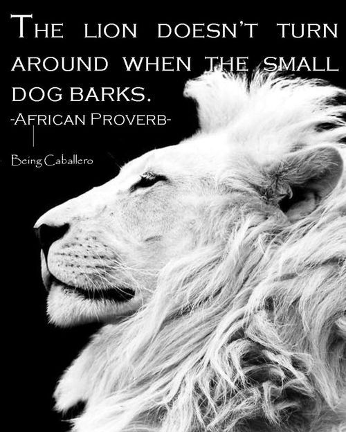 The lion doesn't turn around when the small dog barks.