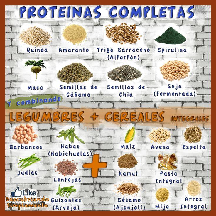 Proteínas Completas para tus Batidos y Comidas