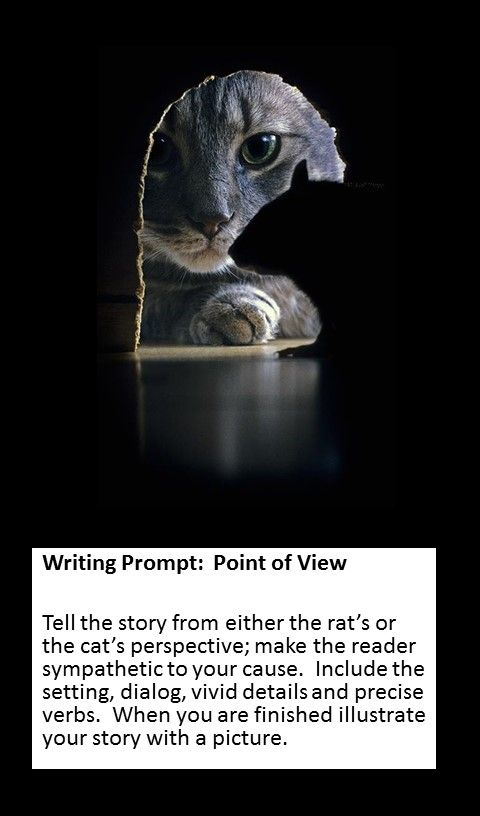 Writing Prompt: Perspective