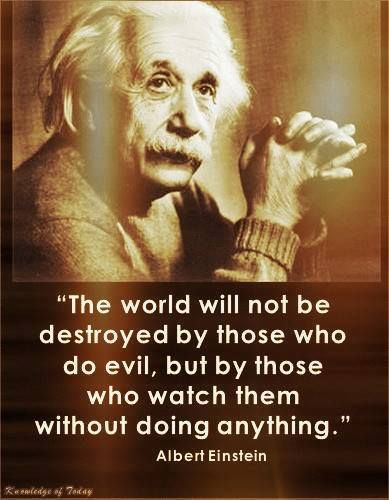 """The world will not be destroyed by those who do evil, but by those who watch them without doing anything."" ~ Albert Einstein"