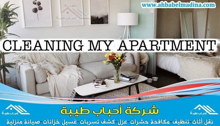شركة تنظيف شقق بالبكيرية بأقل الأسعار Https Ahbabelmadina Com Cleaning Apartments Albukairyah Apartment Cleaning Furniture Home Decor