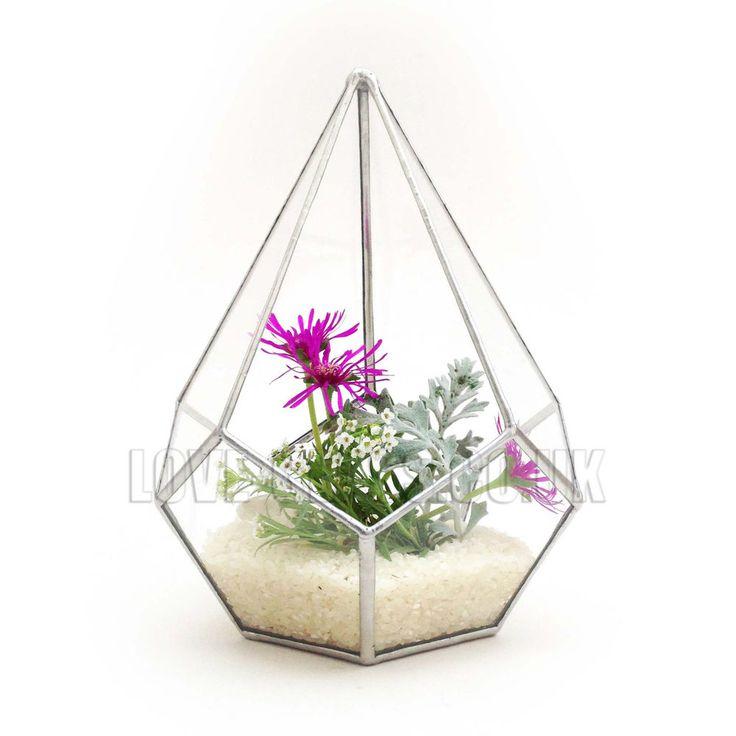 104 Best Images About Terraria On Pinterest: 28 Best LoveGlass Glass Terrariums Planter Geometric