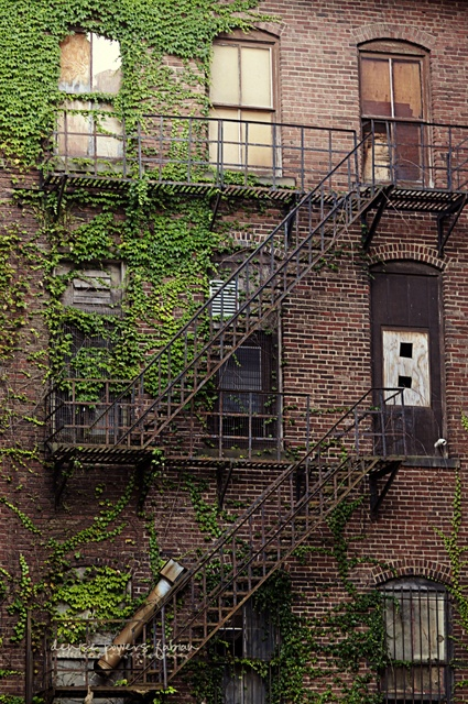 Hooked on fire escapes