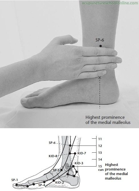 "SP-6 Three Yin Intersection SANYINJIAO - Acupuncture Points -2. Acupressure During Labor. The SP-6 acupressure point ""stimulates the immune system to promote healing by triggering the release of endorphins, reducing stress through muscle relaxation, and promoting circulation"" (London, 2014, p 408)."