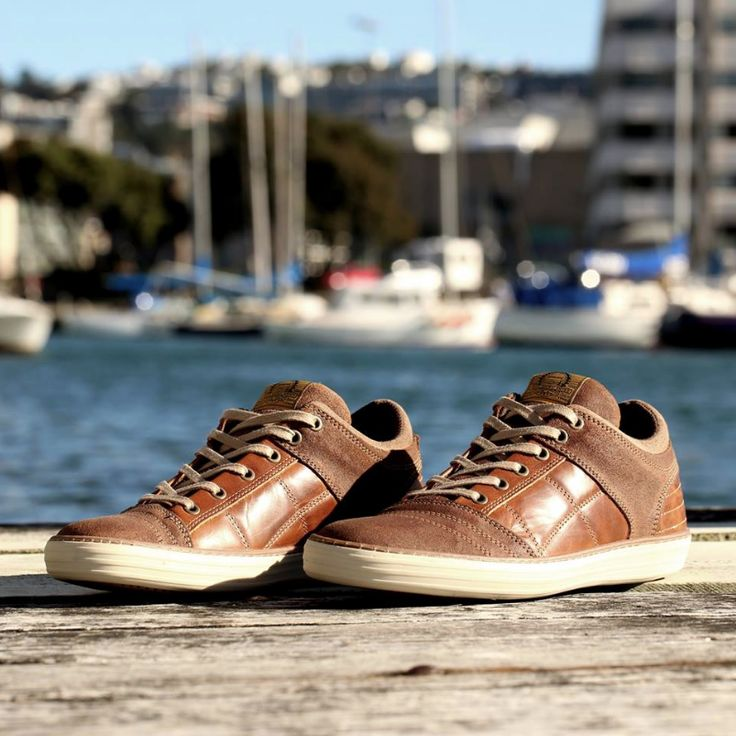Update your wardrobe staples with the Wild Rhino 'Cody' tan casual shoes. Shop: https://www.shoeconnection.co.nz/mens/shoes/casual-shoes/wild-rhino-cody-leather-lace-up-casual-shoe?c=Tan