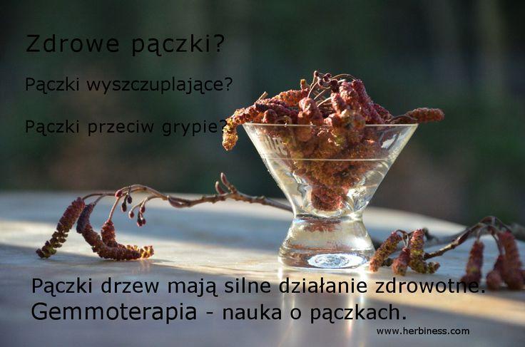 http://www.herbiness.com/wp-content/uploads/2014/02/p%C4%85czusie1.jpg