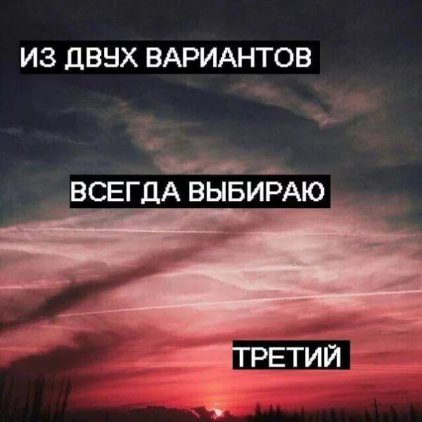сохры: 14 тыс изображений найдено в Яндекс.Картинках