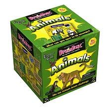 Brain Box Game - Animals