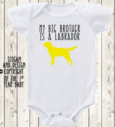 My Big brother Sister is a Labrador Retriever Lab dog ONESIE ® brand bodysuit or shirt pregnancy announcement yellow, black or brown lab