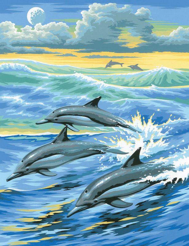Malvorlagen Delfine Sonnenuntergang   Aiquruguay