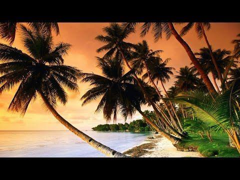 1 Hour of Tropical, Caribbean, and Hawaiian Music - YouTube