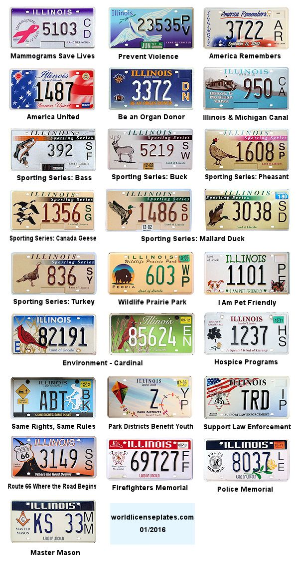 license plate renewal frame leoprad  | Everyday low prices for professional practice are designed