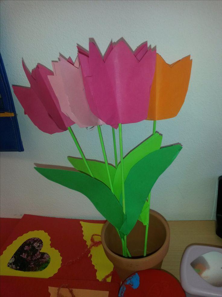 tulipán ke dni matek