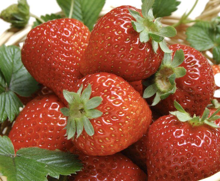 Manfaat Buah Strawberry Untuk Kulit Wajah Buah strawberry dapat dijadikan sebagai scrub wajah yang sangat baik untuk kesehatan kulit, sehingga kulit akan tampak lebih bersih dan halus. Caranya : Siapkan buah strawberry yang telah matang, belah jadi dua bagian. Lalu gosok-gosokan ke seluruh kulit wajah dan leher, diamkan selama 15 menit agar sari buah strawberry dapat meresap secara sempurna kedalam pori-pori kulit. Kemudian bersihkan wajah dengan air dingin sampai bersih.  #perawatankulit