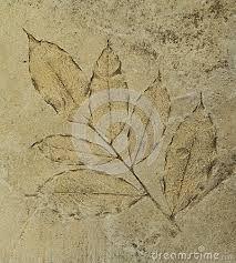 Resultado de imagen para impresion de hojas en piso de cemento