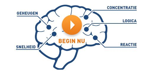 Brain nl