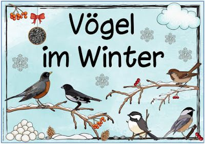 "Ideenreise: Themenplakat ""Vögel im Winter"""