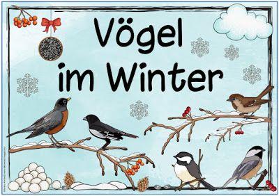 "Ideenreise: Themenplakat ""Vögel im Winter"""