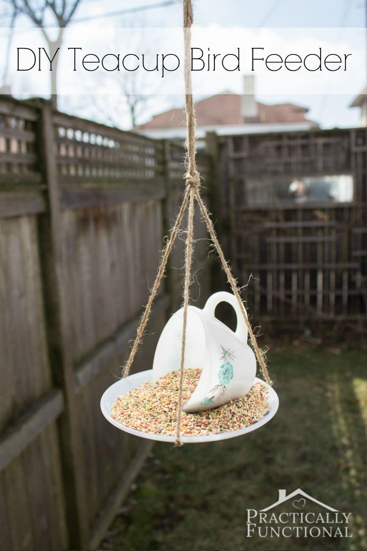 25 unique teacup bird feeders ideas on pinterest bird for Bird seed glue recipe