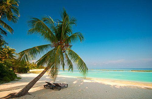 Urlaub im Paradies - Die Malediven sind das Traumziel im Indischen Ozean