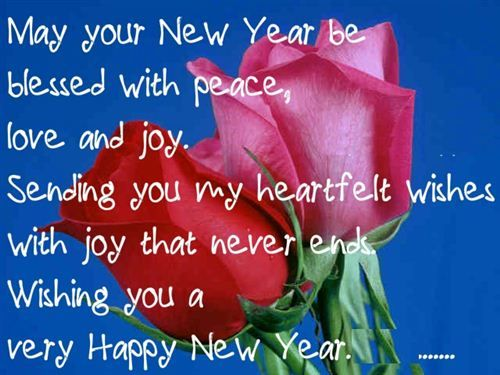 get new_year_sms flowers roses pinterest happy happy new year and happy new year funny