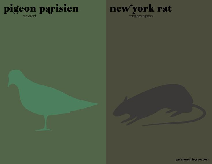 La paste - Paris vs New York, a tally of two cities