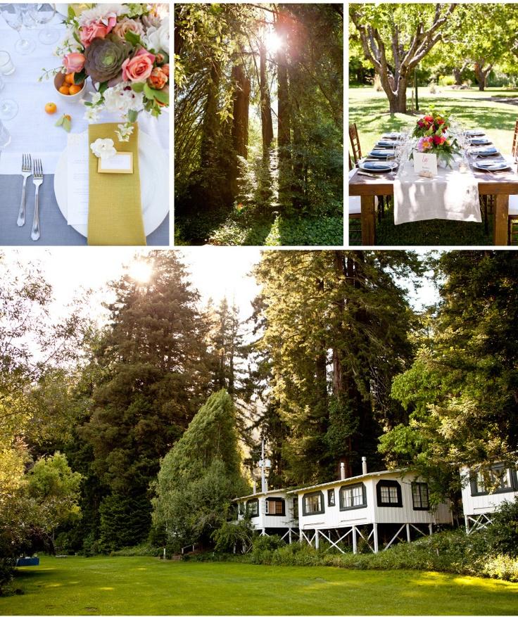 wedding venues in londonderry%0A Sonoma Coast  near Guerneville  little white raised cabins Dawn Ranch  Sonoma  CA