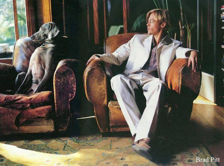 Brad Pitt & Weimaraner  