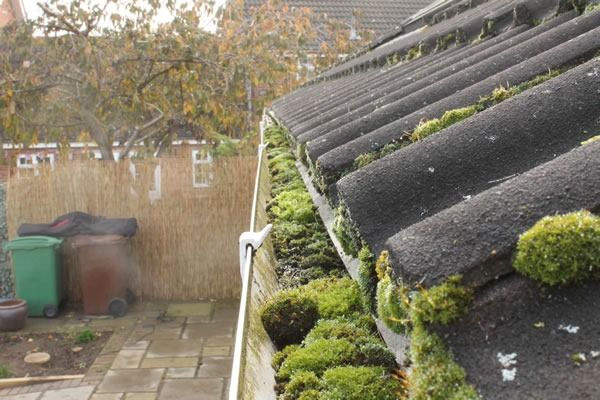 Domestic Gutter Cleaning Havant Domestic Gutter Cleaning Hampshire Before Gutter Cleaning Pho In 2020 Cleaning Gutters Domestic Cleaning Services Domestic Cleaning