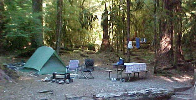 Tent Camping In Backyard :  Camping Memories, Camping Can T, Camping Month, Backyard Campout