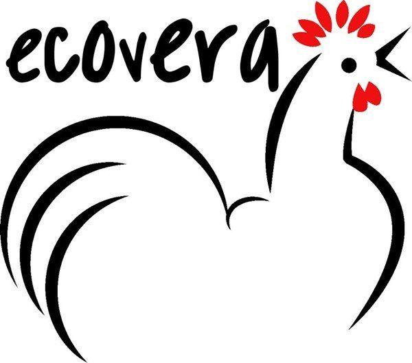 Huevos ecológicos de gallina Ecovera. http://www.generacionnatura.org/directorio/productos-ecologicos-artesanos/107-ecovera.html