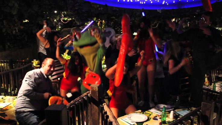 Harlem Shake - WILD Edition by Rainforest Cafe