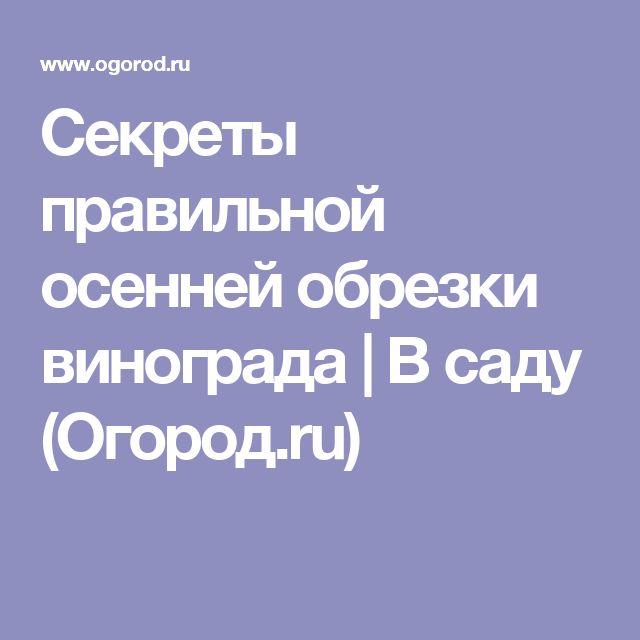 Секреты правильной осенней обрезки винограда | В саду (Огород.ru)