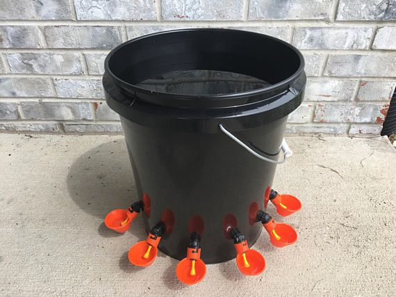6 Cups AUTOMATIC CHICKEN WATER Feeder Bucket Waterer Mothers Day Special, Quail, Great with Feeder