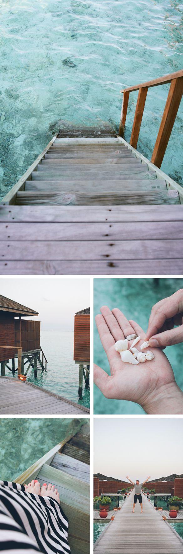 meeru island resort  maldives    The Honeymoon Part 1 | fellowfellow