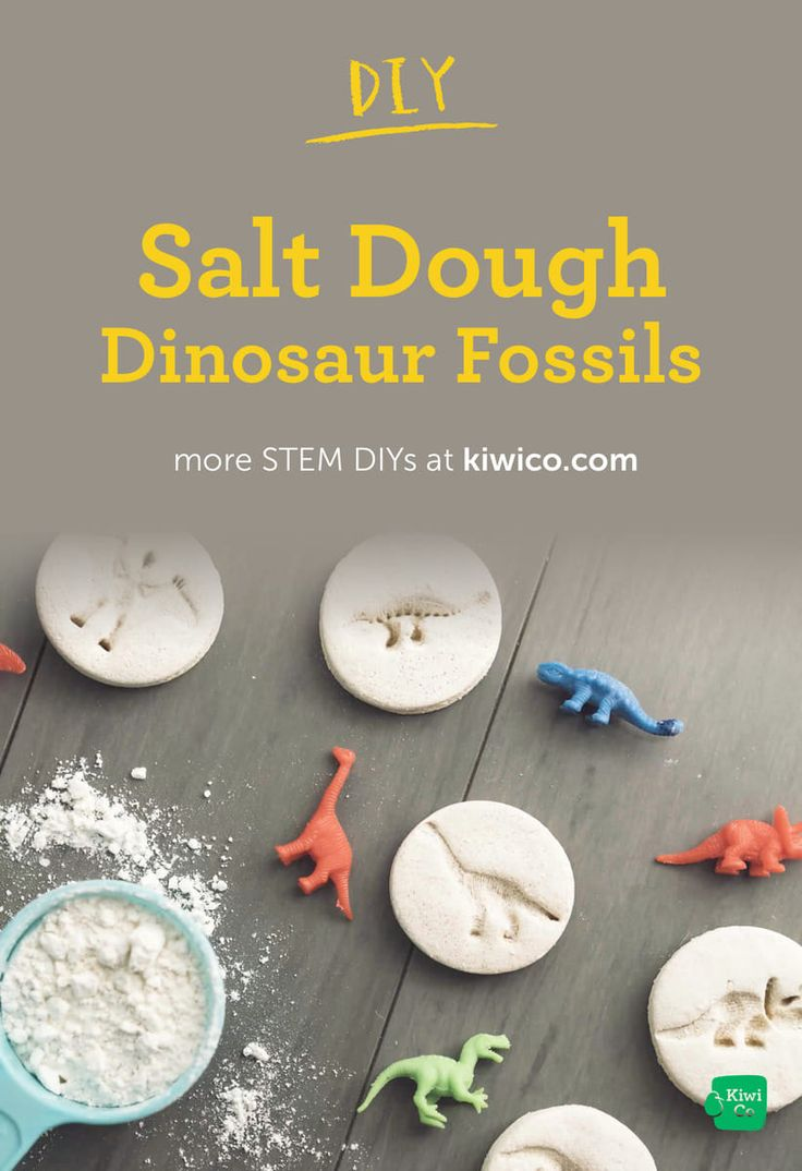Create your own fossils out of salt dough!