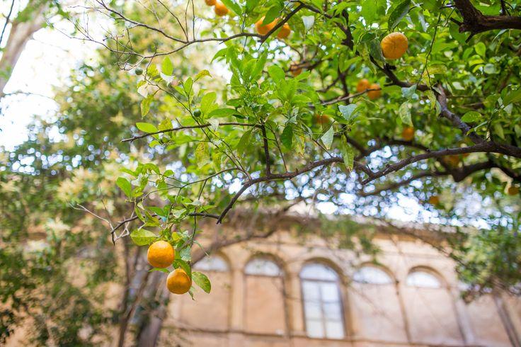 Culinaire hotspot: Valencia