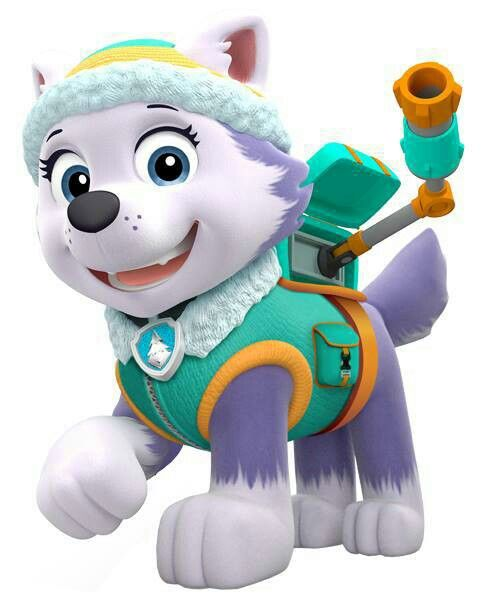 Paw patrol everest