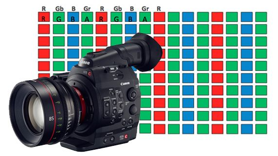 What Exactly is Canon Raw?