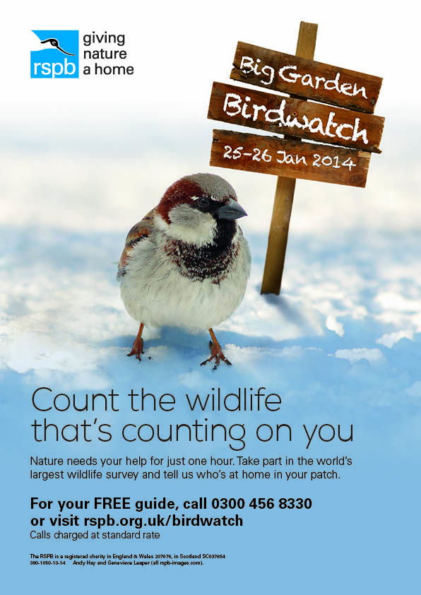 #RSPB's Big Garden #Birdwatch is on 25-26 January 2014 - register online now!