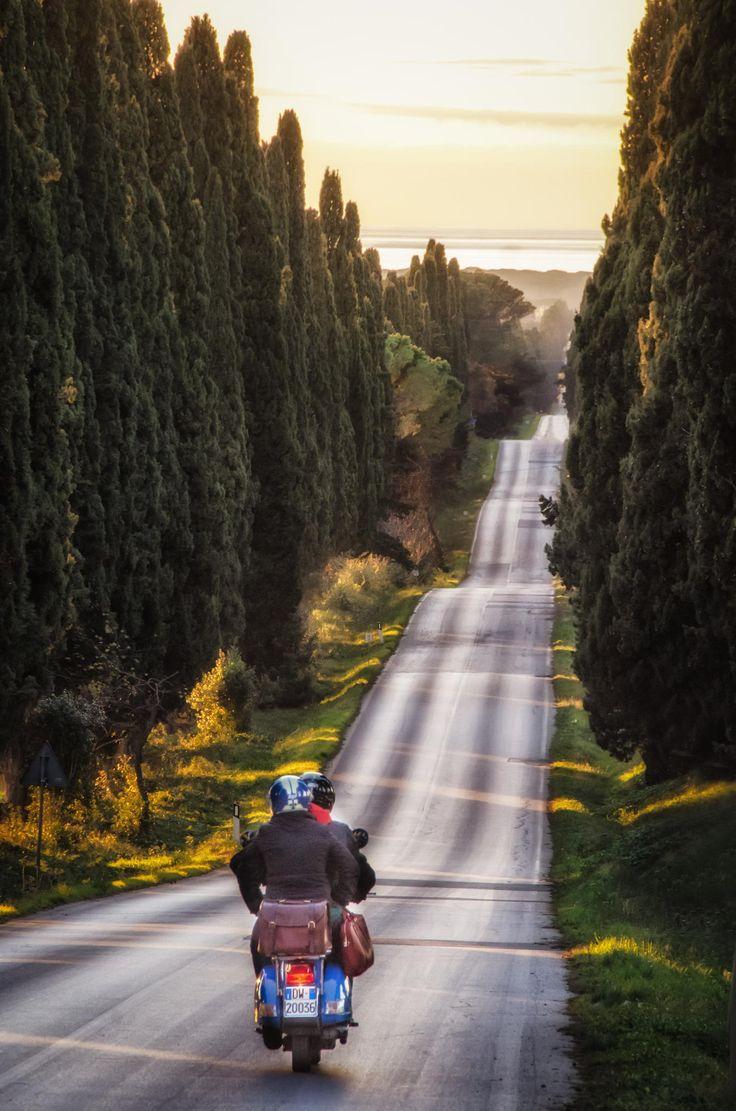 Riding a Vespa down Cypress Avenue in Bolgheri by Mariano A. Medda on 500px