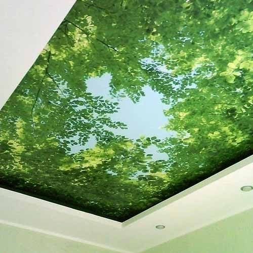 фотообои в интерьере кухни потолок