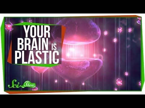 Growth Mindset Videos | Engage Their Minds – Great Minds DON'T Think Alike!