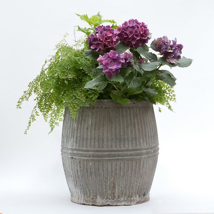 Vintage zinc barrel gardens laundry alternative and for Alternative planters