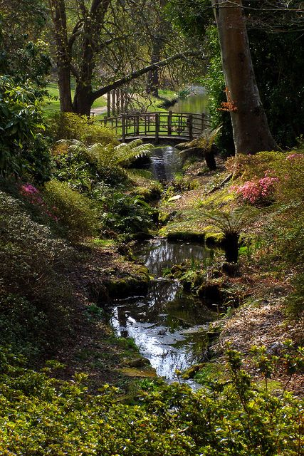 Exbury gardens, Exbury, Hampshire