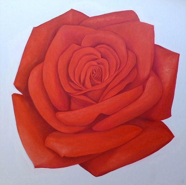 http://pieromotta.it/wp-content/uploads/2013/03/Rosa-rossa-2010-100-x-100.jpg